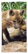 Fox Feather Play Bath Towel
