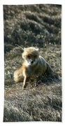 Fox In The Wind Bath Towel