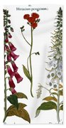 Foxglove And Hawkweed Bath Towel