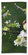 Framed Cardinals In Spring Bath Towel