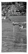 Freedom Is A Seagull Name Black And White Bath Towel