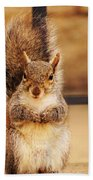 French Fry Eating Squirrel2 Bath Towel