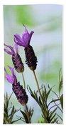 French Lavender Bath Towel