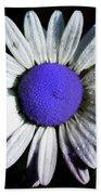 Fringe - Blue Flower Bath Towel