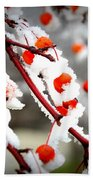 Frosted Berries Bath Towel