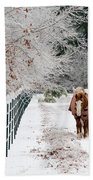 Frosty Mare Hand Towel