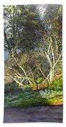 Frosty Morning Near Nant Clwyd, North Wales Bath Towel