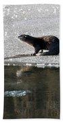 Frosty River Otter  Bath Towel