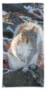Frosty Squirrel Bath Towel