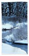 Frozen In Time Bath Towel