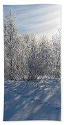 Frozen Views 3 Bath Towel
