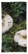 Fungi No 3 Bath Towel