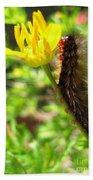 Furry Caterpillar On A Yellow Flower Bath Towel