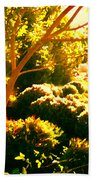 Garden Landscape On A Sunny Day Bath Towel