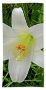 Garden Lily Posterized Background Bath Towel