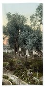 Garden Of Gethsemane Bath Towel