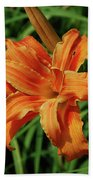 Garden With A Blooming Double Daylily Flowering Bath Towel