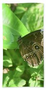 Garden With A Blue Morpho Butterfly With Wings Closed Hand Towel