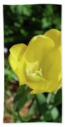 Garden With Beautiful Flowering Yellow Tulip In Bloom Bath Towel