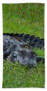 Gator Bath Towel