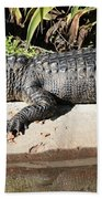 Gator Bath Towel