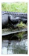 Gator On The Shore Bath Towel