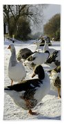 Geese At The Frozen Horninglow Basin Bath Towel
