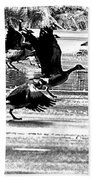 Geese On Ice Taking Flight Bath Towel
