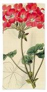 Geraniums Hand Towel