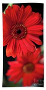 Gerbera Bath Towel