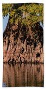 Giant Cypress Tree In Reelfoot Lake Bath Towel