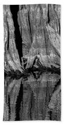 Giant Cypress Tree Trunk And Reflection 2 Bath Towel