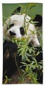 Giant Panda Eating Bamboo Bath Towel