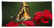 Giant Swallowtail Butterfly Bath Towel