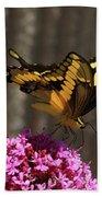 Giant Swallowtail  Bath Towel