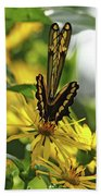Giant Swallowtail Wings Folded Hand Towel