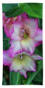 Gladiolas Blooming With Ripening Blueberries Bath Towel