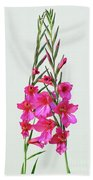 Gladioli Byzantinus In Love Bath Towel