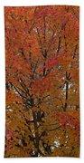 Glorious Autumn Bath Towel