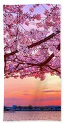 Glorious Sunset Over Cherry Tree At The Jefferson Memorial  Bath Towel