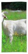 Goat Portrait  Bath Towel