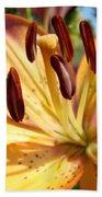 Golden Lily Flower Orange Brown Lilies Art Prints Baslee Troutman Bath Towel