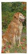 Golden Retriever Dogs In Autumn Bath Towel