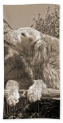 Golden Retriever Dogs The Kiss Sepia Bath Towel