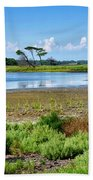 Gordons Pond At Cape Henlopen State Park - Delaware Bath Towel