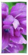 Gorgeous Flowering Purple Tulip Flower Blossoms In A Garden Bath Towel
