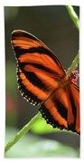 Gorgeous Orange And Black Oak Tiger Butterfly Bath Towel