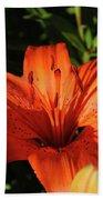 Gorgeous Pretty Orange Lily Flower Blooming In A Garden Bath Towel