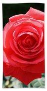 Gorgeous Rose Bath Towel