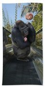 Gorilla With Lollipop Bath Towel